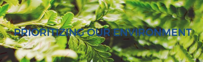 Environment header image