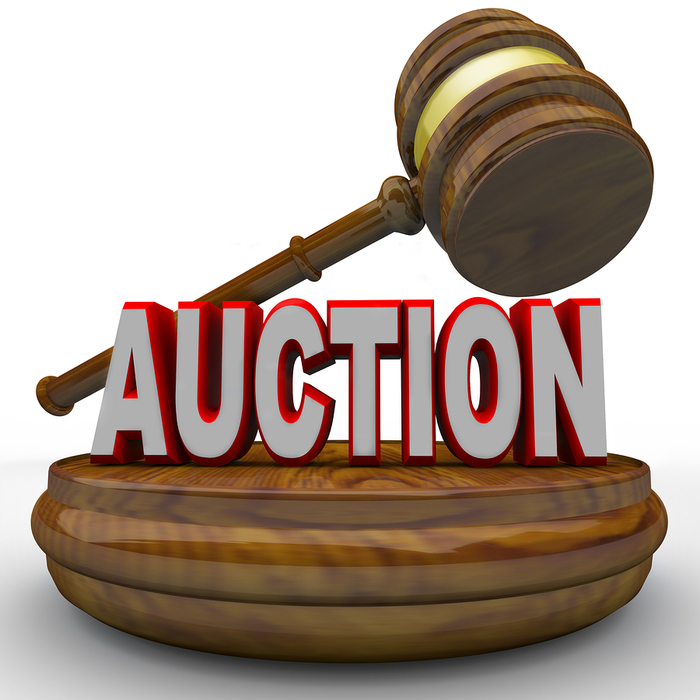 MRCA Foundation Auction - Less than a week left!