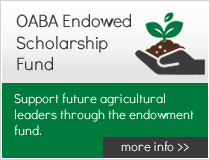 OABA Endowed Scholarship Fund