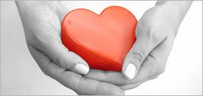 heart in hands border