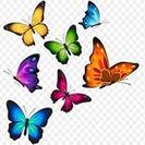 Butterflies 3x3