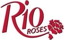 rio rose
