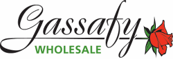 Gassafy Wholesale Inc