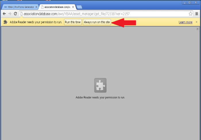 Do you use Google Chrome to access the Pro-Forms Generator?